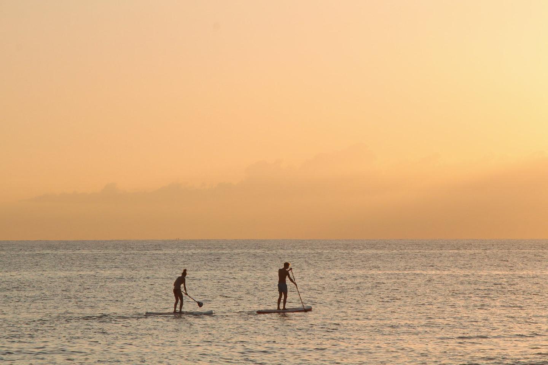Paddle surf 452